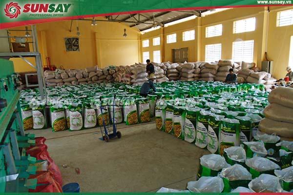 Lắp đặt máy sấy lúa tại Đồng Tháp
