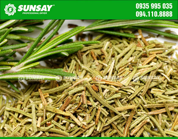 Hương thảo sấy khô