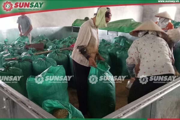 Máy sấy vĩ ngang sấy lúa Nam Định