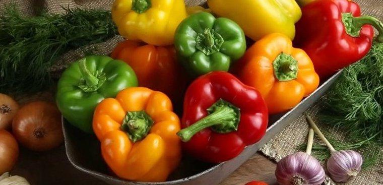 Chọn nguồn ớt chuông đảm bảo để sấy khô
