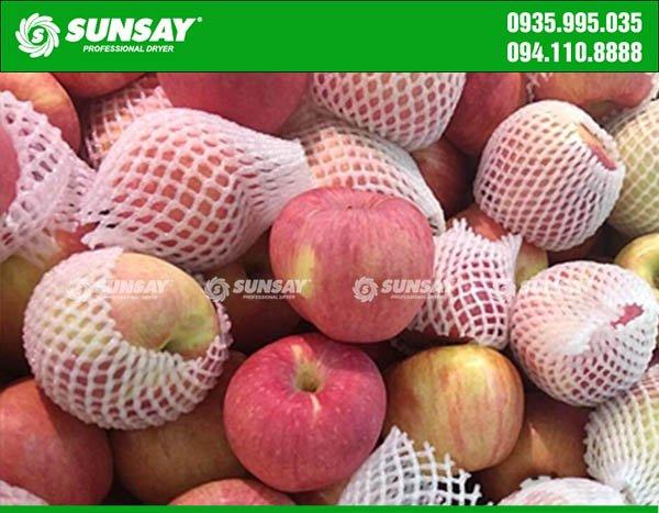 Những quả táo thơm ngon, giàu giá trị dinh dưỡng