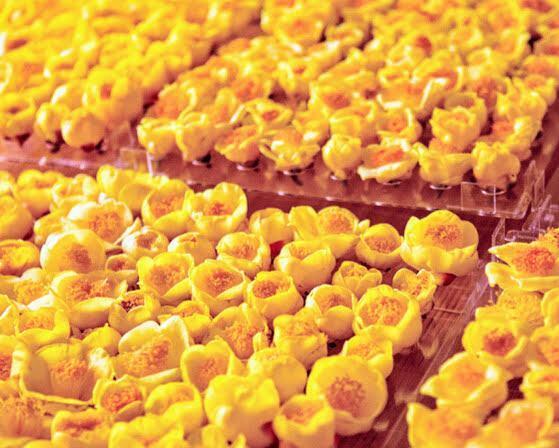 Trà hoa vàng sấy khô giữ nguyên màu sắc, hình dáng